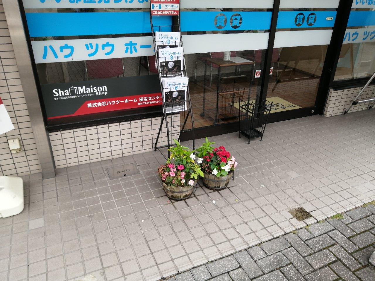 お店の前にある「癒し」・・・